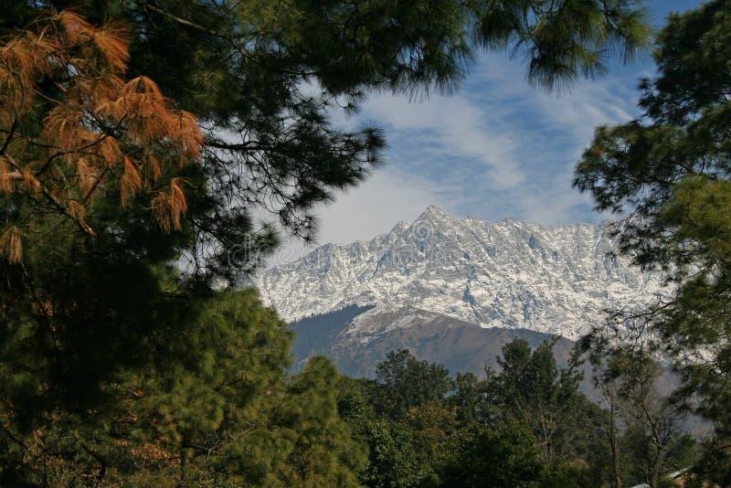 Escala do himalayn de Dhauladhar da cidade India de dharamsala fotografia de stock
