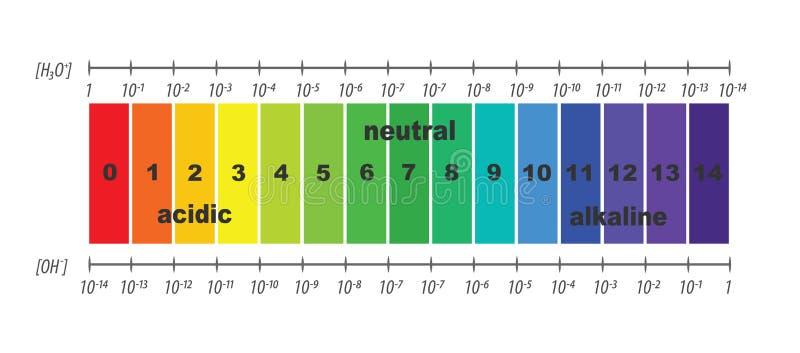 Escala do valor de pH para soluções ácidas e alcalinas ilustração do vetor