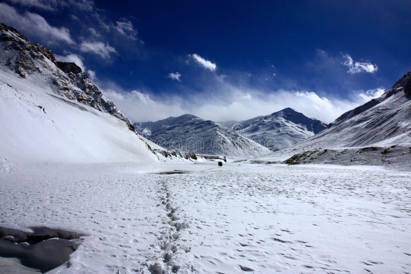 Escala himalayan da tampa nevado fotografia de stock royalty free