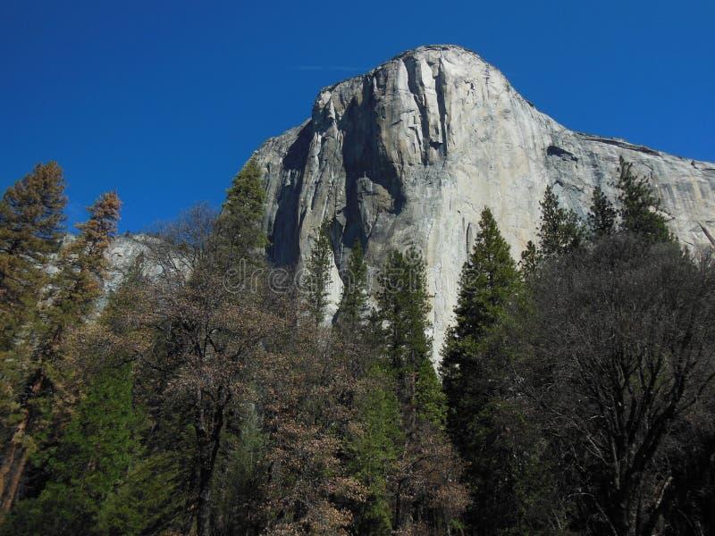 Escalada de la formación de roca del EL Capitan fotos de archivo libres de regalías