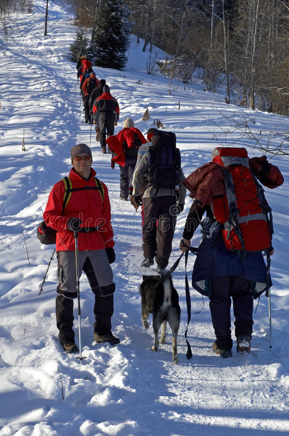 Escalada grande do grupo do snowshoer fotos de stock
