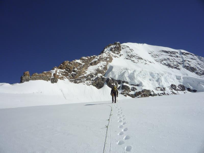 Escalador de montaña que camina a través de un glaciar al pico de montaña de Moench del pie en las montañas suizas cerca de Grind foto de archivo libre de regalías