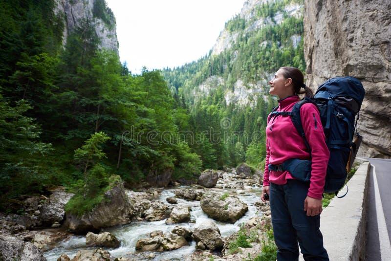 Escalador femenino que admira vista asombrosa de montañas rocosas y de la corriente herbosas verdes del agua en área montañosa en imagenes de archivo