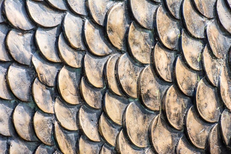 Escalas de peixes fotos de stock