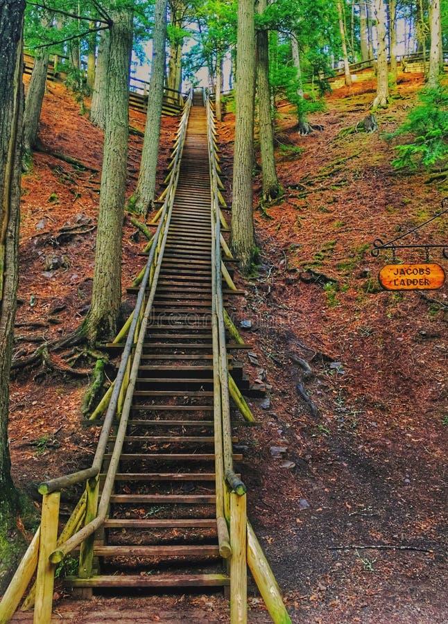 Escalera de Jacobs en el parque de Victoria NS foto de archivo libre de regalías