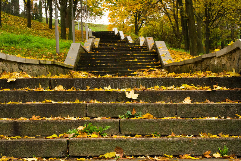 Escalera en el parque fotografía de archivo
