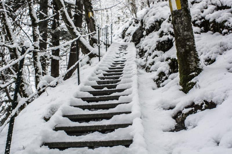 Escalera en el rastro de montaña cubierto en parte en snoww fotografía de archivo libre de regalías