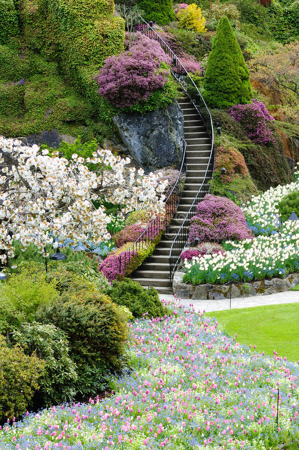 Escalera en jardín foto de archivo libre de regalías
