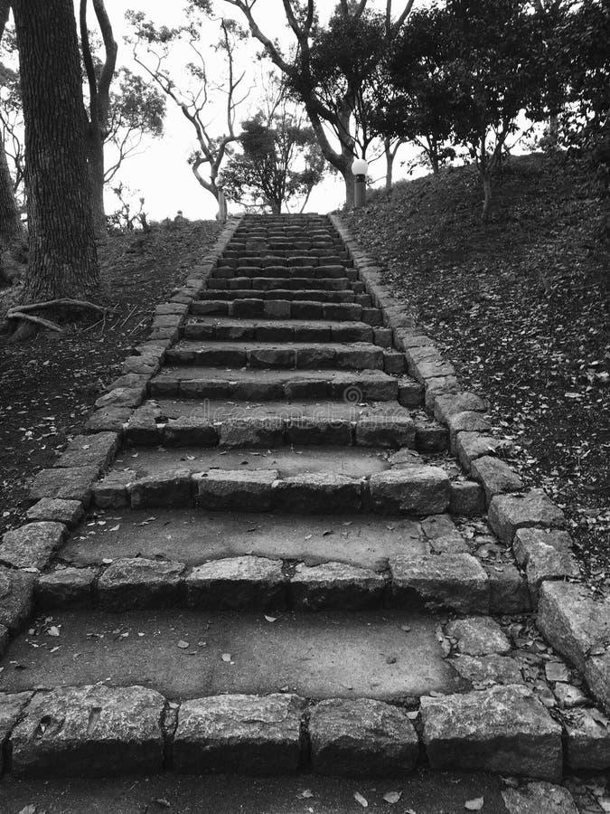 Escalera vieja de la roca en black&white foto de archivo libre de regalías