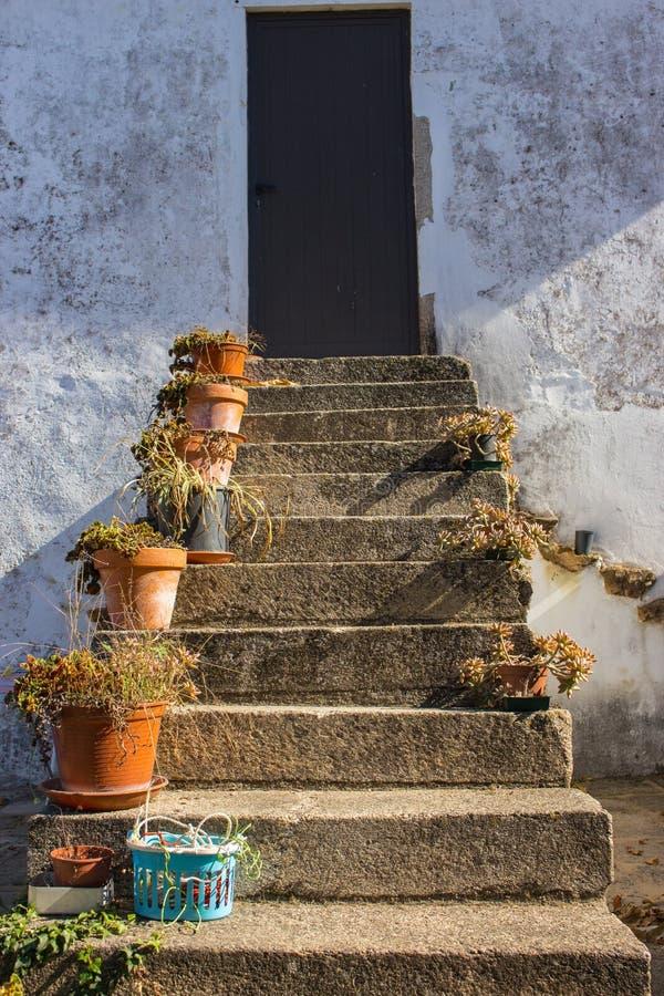 Escaleras al aire libre del nn de las macetas con la puerta cercana Dise?o del patio Patio trasero tradicional en Europa Flores e imagen de archivo