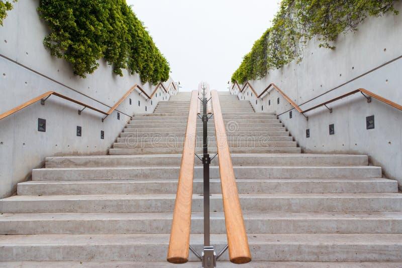 Escaleras con las tomas de madera Pared adornada con las hojas verdes de la hiedra foto de archivo libre de regalías