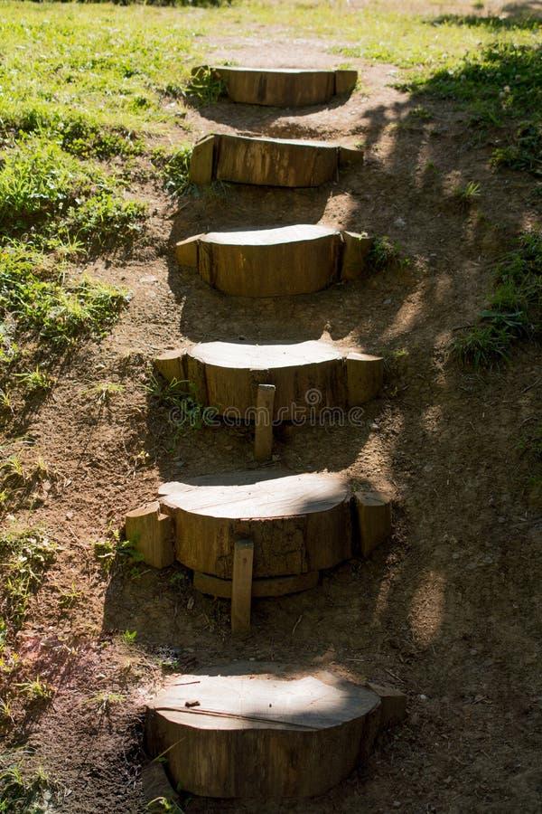 Escaleras de madera hechas de troncos de rbol foto de for Escalera interior de troncos
