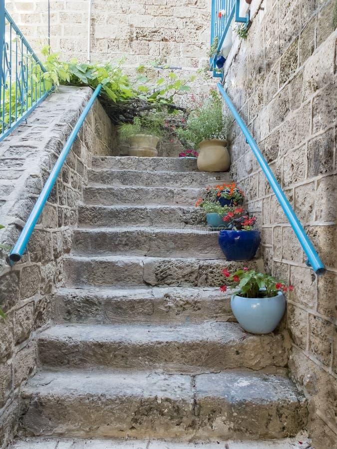 Escaleras de piedra con las flores foto de archivo