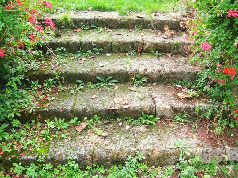 Escaleras del jardín fotos de archivo