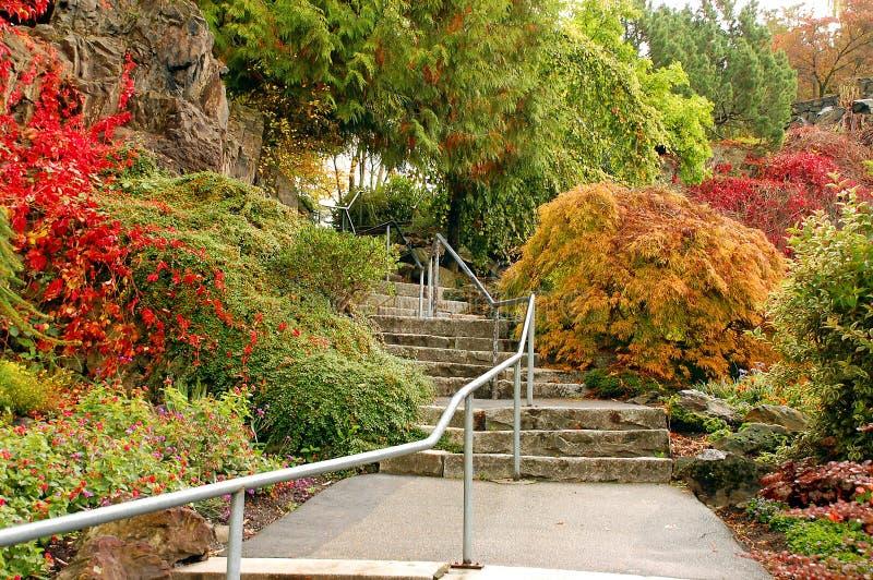 Escaleras del jardín botánico en otoño fotografía de archivo