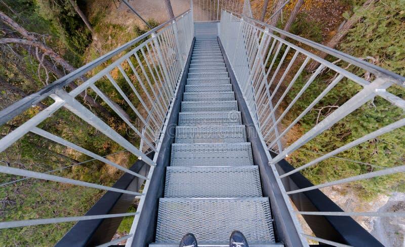 Escaleras del metal que llevan en bosque de una plataforma de visión con los pies masculinos en zapatos azules en el primero plan imágenes de archivo libres de regalías