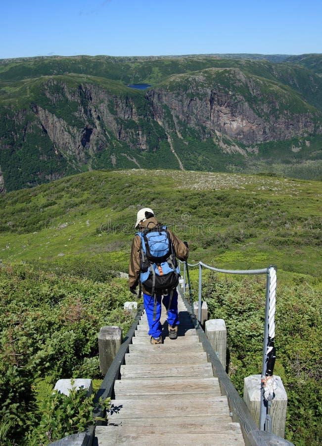 Escaleras descendentes del caminante en la montaña de Gros Morne imagen de archivo