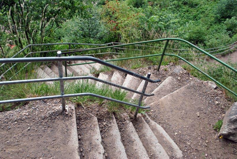 Escaleras en el bosque imagen de archivo libre de regalías
