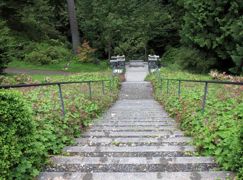 Escaleras escarpadas al banco del arbolado foto de archivo