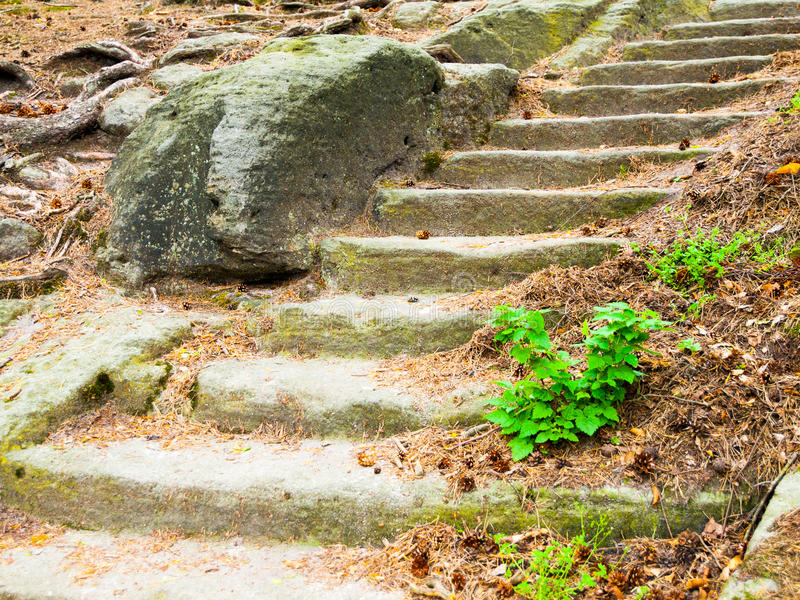 Escaleras largas de la piedra arenisca en el bosque, Kokorinsko, República Checa fotografía de archivo