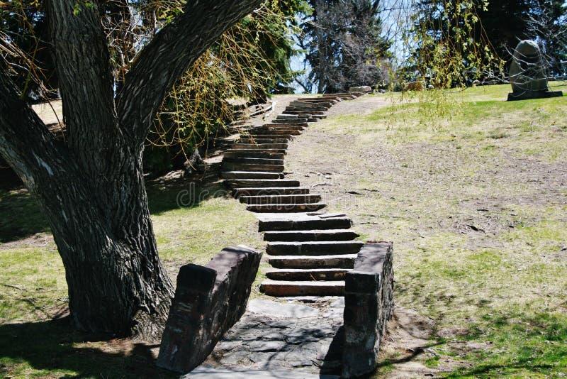 Escalier à image stock