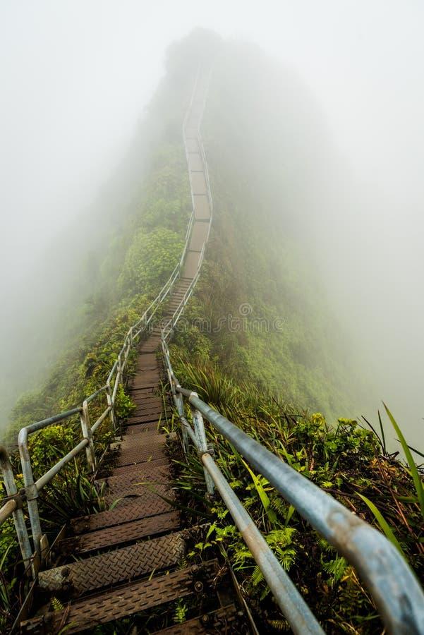 Escalier au ciel dans le coverd d'Hawaï d'île d'Oahu par le brouillard de matin image libre de droits