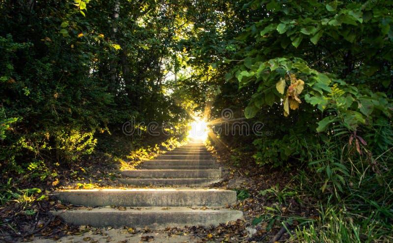Escalier au paysage de nature de ciel images stock
