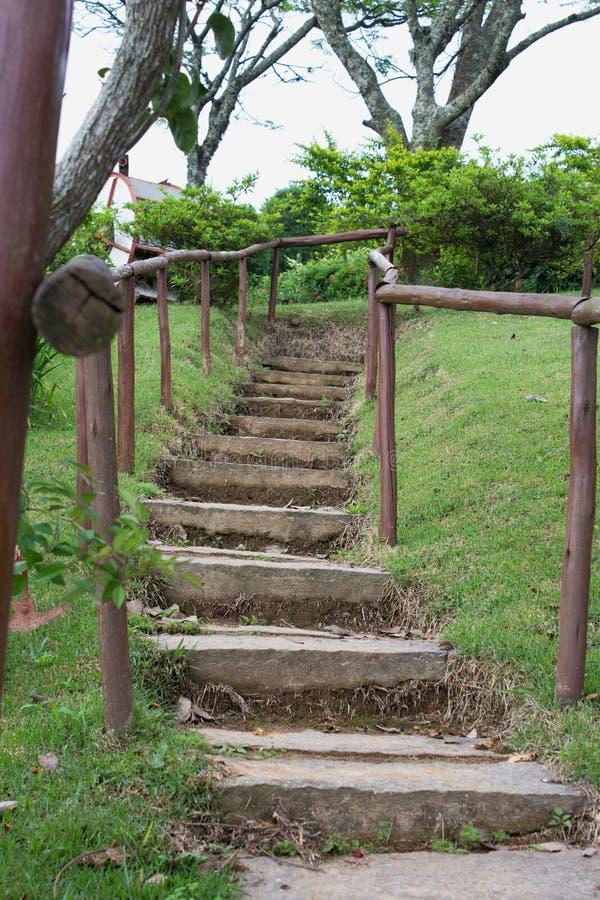 Escalier De Jardin Chez Bramasole Photo stock - Image du ...