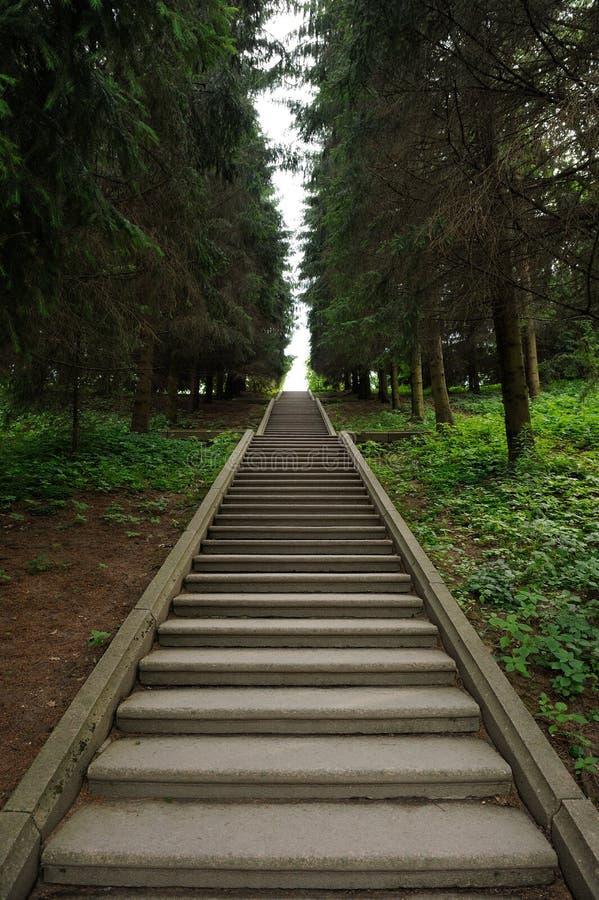 Escalier en béton longtemps vide photographie stock libre de droits