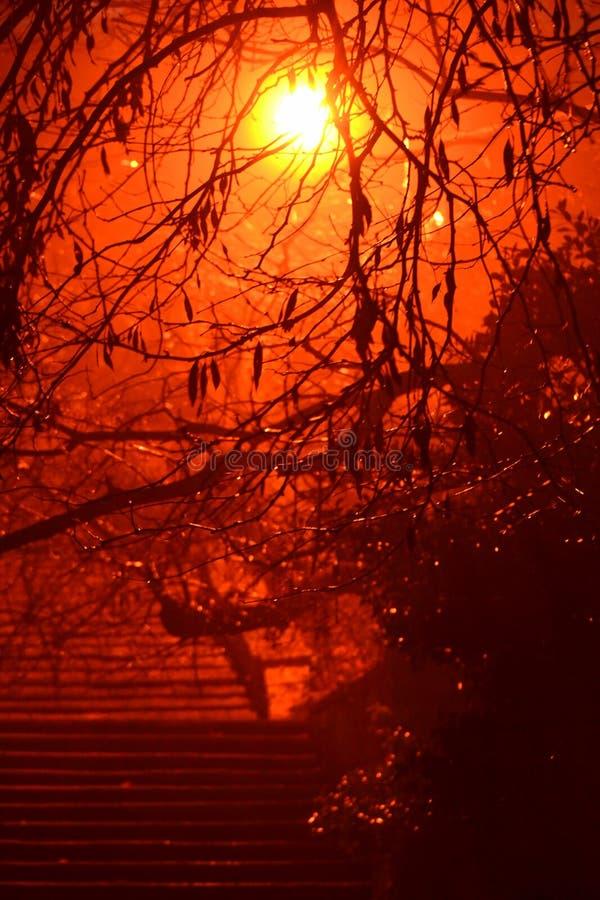 Escalier et lumière dans la nuit humide sombre d'hiver images stock