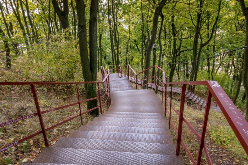 Escaliers à l'automne photo stock