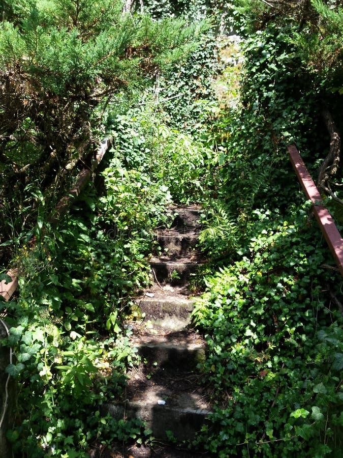 Escaliers à nulle part image stock
