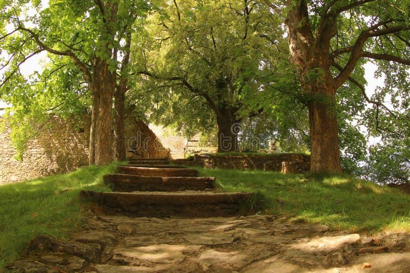 Escaliers au château de Lipnice, Czechia image stock