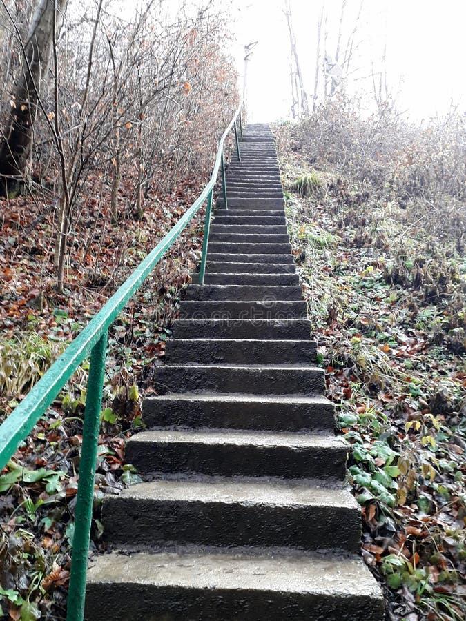 Escaliers au ciel images libres de droits