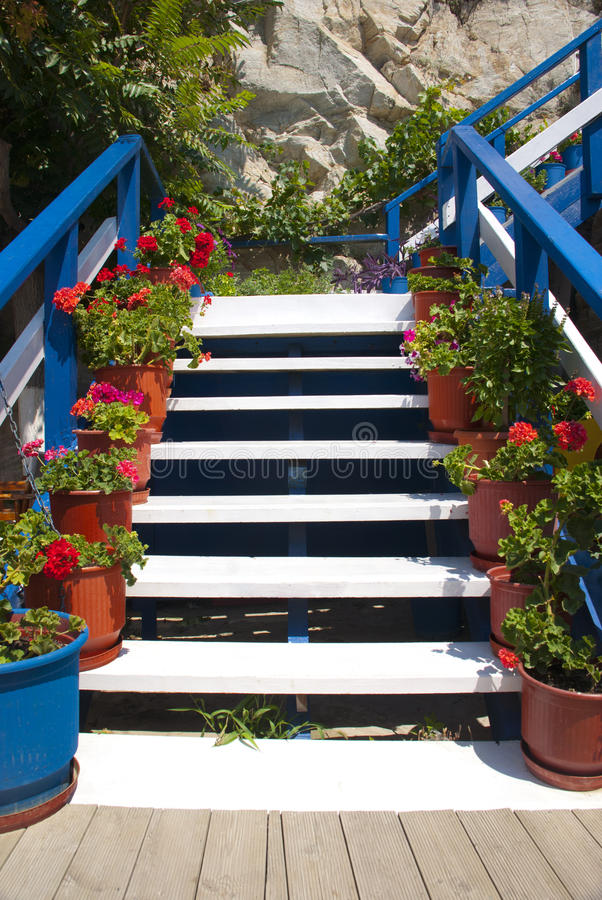 Escaliers avec des fleurs images stock