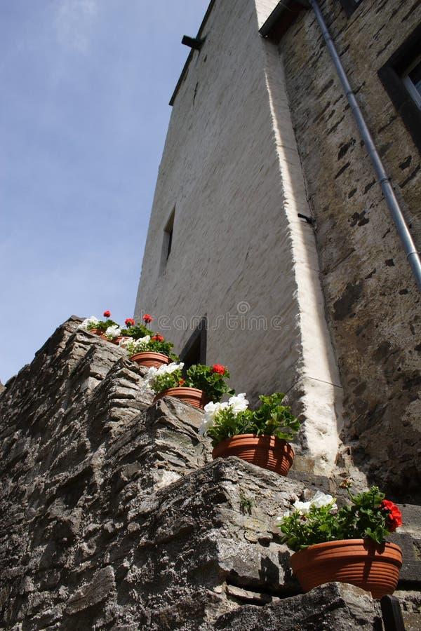 Escaliers avec des fleurs photographie stock
