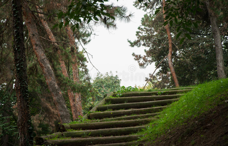 Escaliers cachés image libre de droits