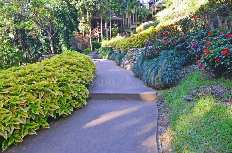 Escaliers concrets en beau parc photographie stock