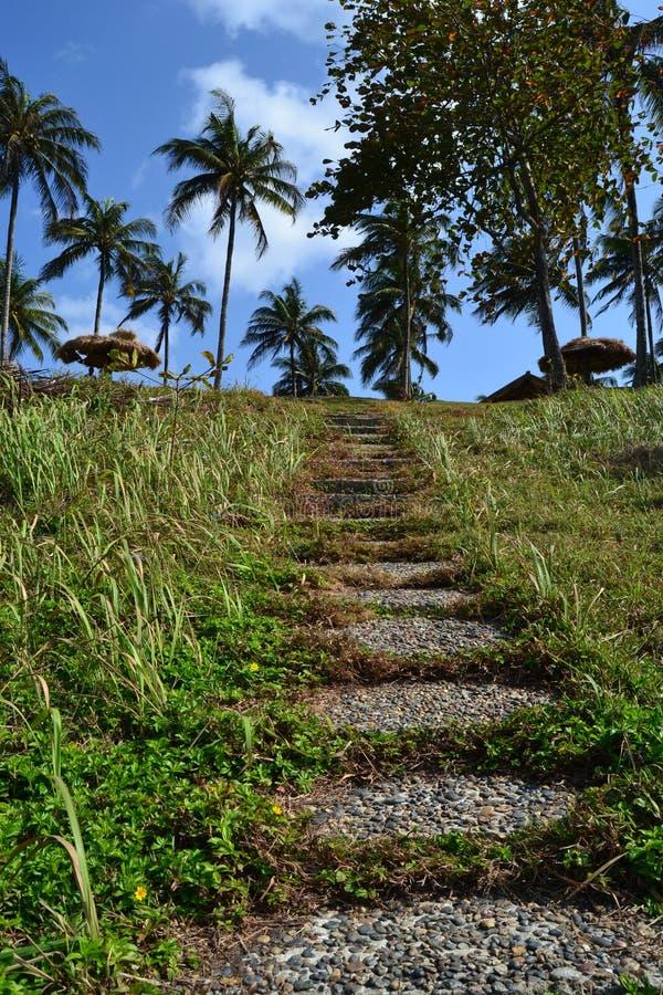 Escaliers de jardin image libre de droits