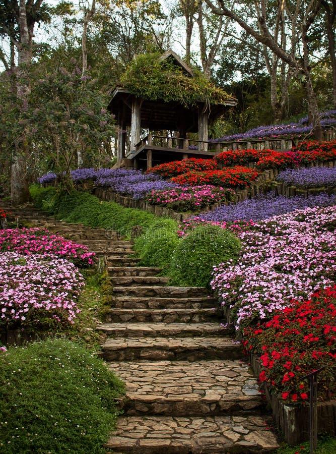 Escaliers de jardin photos libres de droits