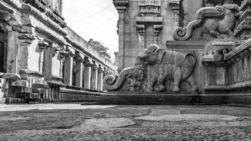 Escaliers de sculpture en éléphant au grand temple photos stock