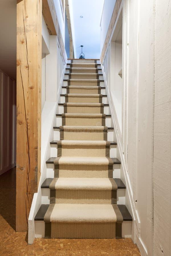 escaliers de sous sol dans la maison photo stock image du entr e tapis 30611680. Black Bedroom Furniture Sets. Home Design Ideas
