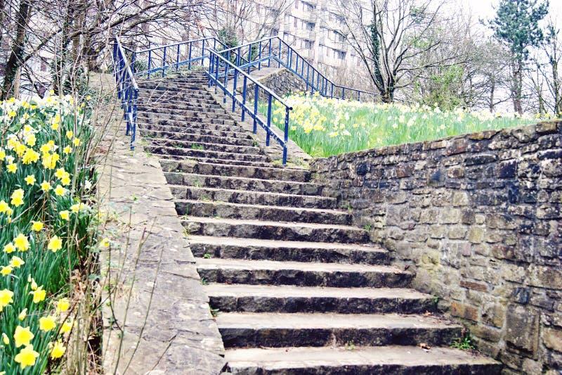 Escaliers du parc du château images stock