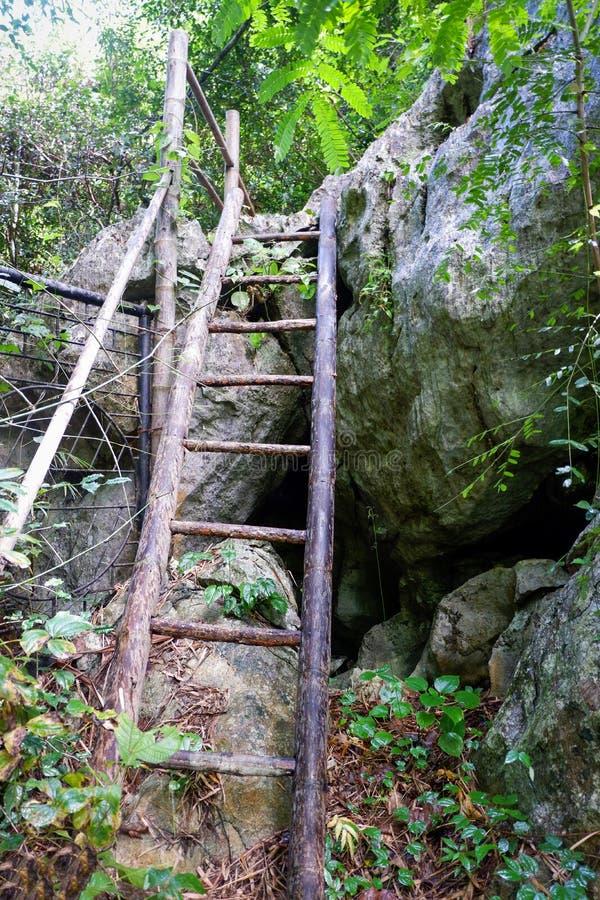 Escaliers en bambou photographie stock libre de droits