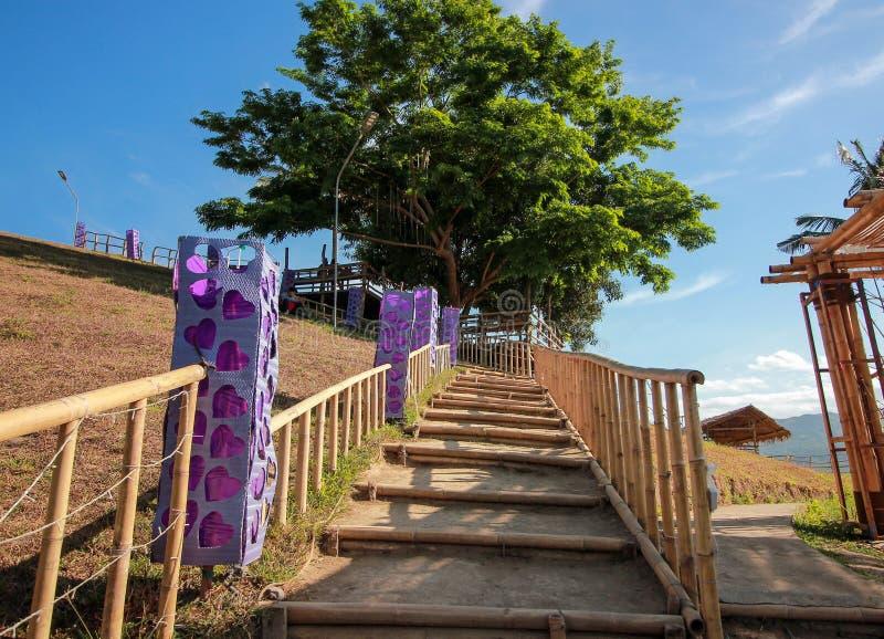 Escaliers en bambou aux Philippines photo libre de droits