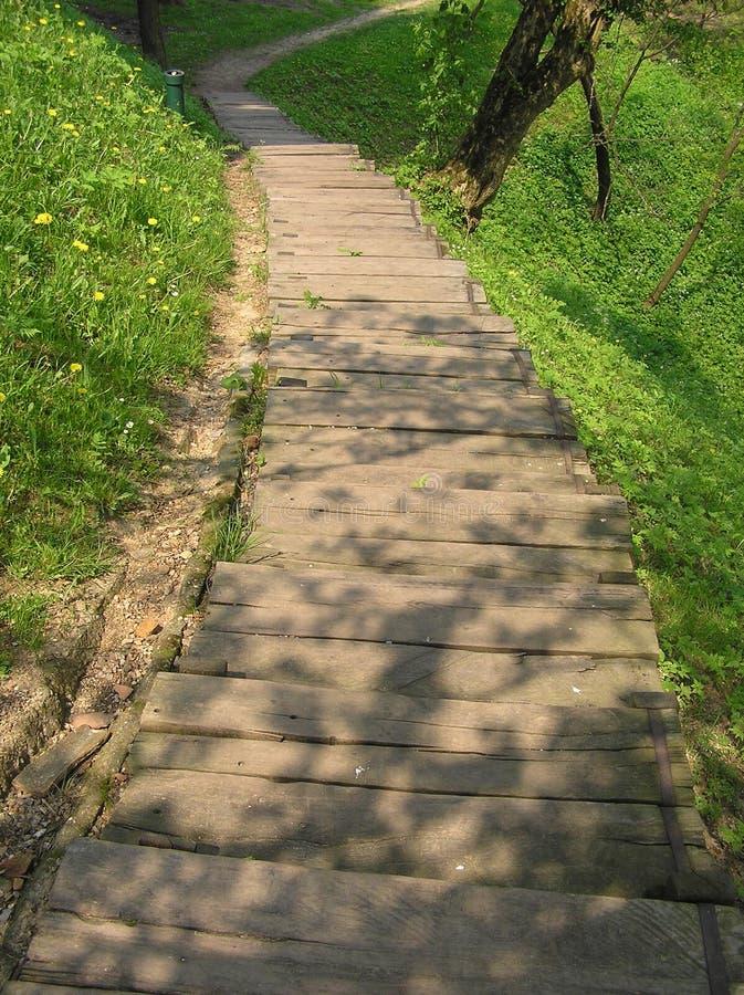 Download Escaliers en bois photo stock. Image du ressort, nature - 743454