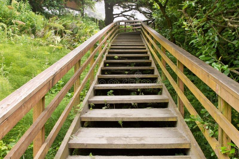 Escaliers en bois au journal de hausse photos libres de droits