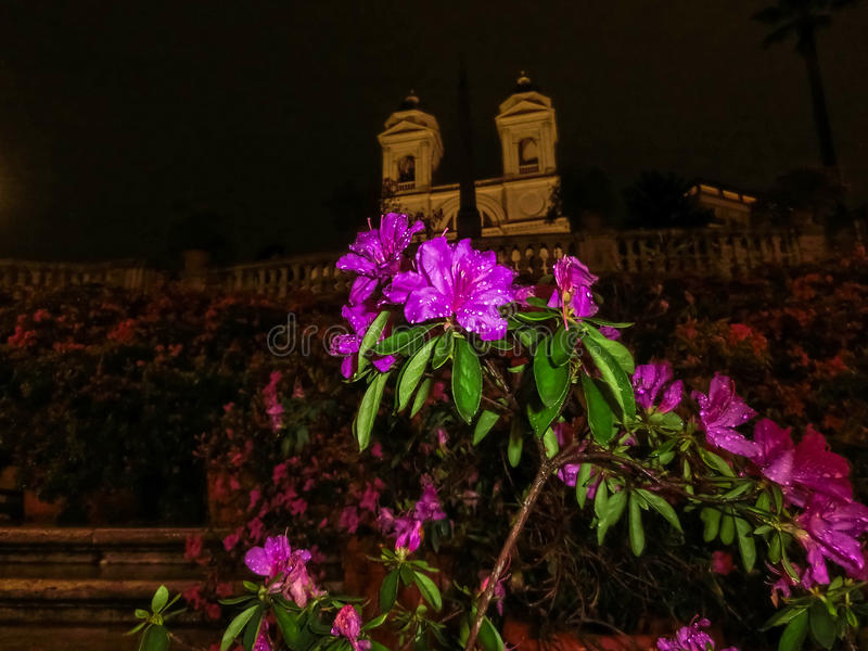 Escaliers espagnols à Rome photos stock