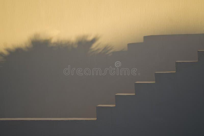 Escaliers et ombres au coucher du soleil image libre de droits