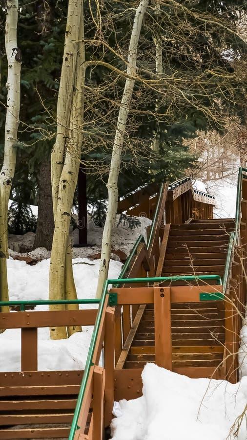 Escaliers extérieurs verticaux sur une pente de montagne couverte de neige pendant l'hiver photographie stock libre de droits